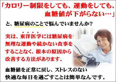 石丸式 東洋医学による糖尿病改善法 石丸昌志